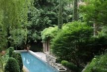 Gardens / by Rita Barham