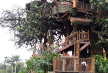 Tree Houses / Outdoor tree houses / by Jen Pallitto