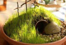 He is risen! / by Shelly Blank