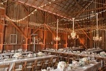 Wedding / by Erin Canty