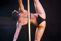 pole / by Yvonne Gitlin