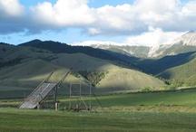 Montana, my home. / by Glenda McOsker