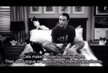TV - Big Bang Theory / by Dawn Sims