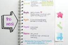 organized life / by sadly, still