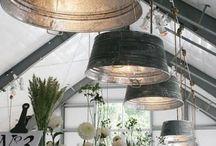 Greenhouse Lighting / by Michael Cruz