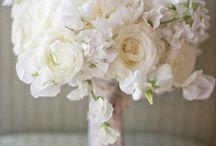 Dream Wedding / by Holly