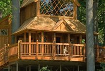 tree houses / by Katherine Smith-Schad