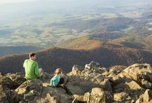 Road Trip: Shenandoah and Skyline Drive / A road trip through the heart of one of Virginia's iconic national parks. / by FamilyFun magazine