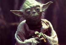Yoda / by Cathy Mathias
