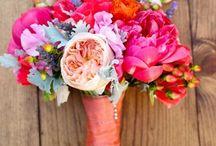 Future Wedding Stuff / by Caitlin Smith