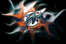 Miami Dolphins / by Sandra Torres