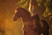 Horses / by Renae Luedtke