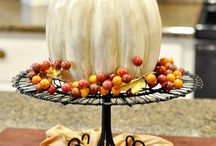Autumn Fun <3 / by Jacy Gardner