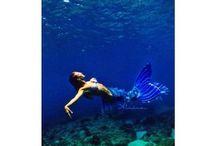 Mermaiding it up / by Mari Rayner