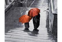 Rain / by Linda Beach