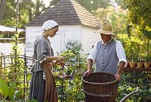 Colonial Williamsburg And Similar Places / by Lizzy A.