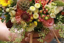 flora / Flowers-- my passion, and my profession. / by Megan Flickinger