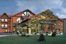 ❤️GREAT WOLF LODGE!!!!!!!!!!!!❤️ / My favorite vacation spot in the world!!!!! / by Mitchell M