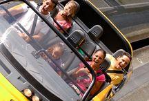 Disney Trip-2014 / by Nicole Creech Cassidy