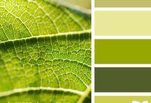 Color Schemes / by Karen Case
