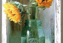 Sunflowers / by Sharon Johnson