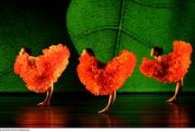 MOMIX Botanica, dance inspired by nature / by Laura Teeple