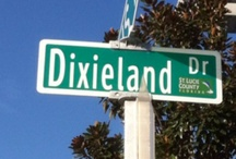 Deep in the Heart of Dixie! / Places and just being from the South. I wouldn't want it any other way! / by Nancy
