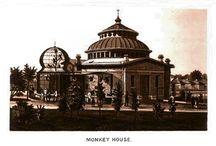 Zoo History / by Cincinnati Zoo