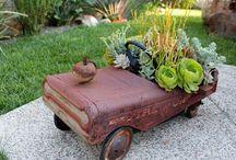 Container Gardens / by Susan DeLucca