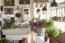 potting sheds / by Carol Coletto
