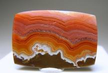 GEOS. Shells. Minerals. / by alvaro ellakuría