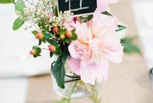 Wedding / by Kelly Stanic