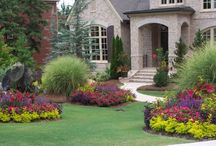 Front Yard landscapes / by Art