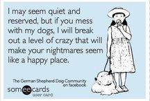 Love 'em & Leave 'em Pet Care / by Stacey Weikel
