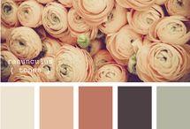 color / by Melissa Blaine-Culp
