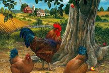 Chicken Rooster Poultry Art / by Rosemary Brown Sample