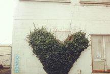 Go Green....Please!! / by Stefica Turuk