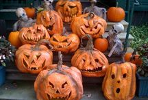 Autumn! Halloween! Thanksgiving!  / by Casey Iddings
