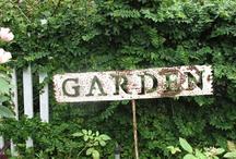 ~ In The Garden Love ~ / by Misty Dennie