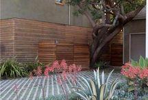 Gardens / by A I