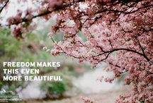 Inspiration / by Mackinac Center