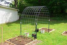 Gardening ideals  / by Josetta Mitchell