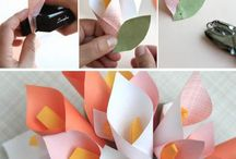 Paper flowers / by Iulia Timoc