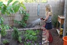 Gardening / by Jo-Ann Brightman