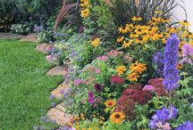 Beautiful and Useful Gardens / by Myrna Trauntvein