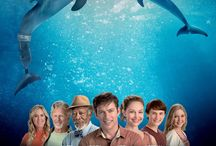Dolphin Tale 2 '14 / by Marquee Cinemas