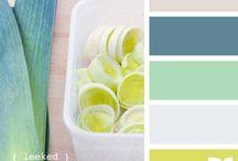 Color & Pattern / by Karen Propp