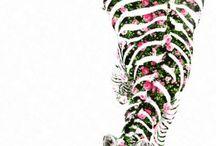 Prints / by Jessica Monti