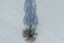 interests > aerial vistas / Views of earth, nations and human activity seen from above / by Andy Milligan