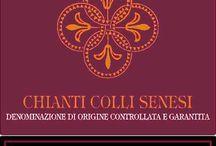 Chianti / Portfolio of Chianti Wines Distributed by www.angeliniwine.com   / by Angelini Wine